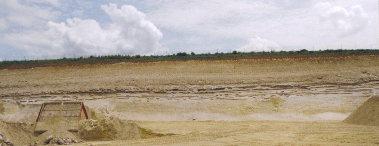 A.E.S.S.F.G.                   Association pour l'Etude et la Sauvegarde des Sites Fossilifères et Géologiques